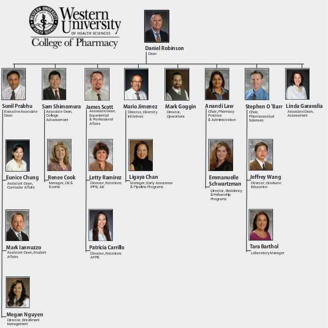 WesternU College of Pharmacy Organizational Chart | Web Interaction